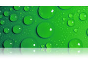 Grün, Hygiene, Körper