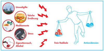 Freie Radikale, Antioxidozien, Gleichgewicht